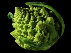 800px-Fractal_Broccoli